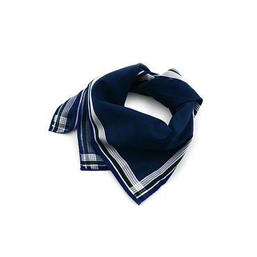 Checked Blue bandanas